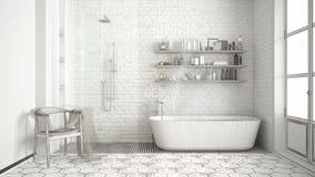 Projet non fini de salle de bains classique scandinave de vintage, ske illustration libre de droits