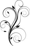 Projete o elemento floral Imagem de Stock