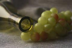 Projeto abstrato do fundo dos produtos vidreiros do vinho Imagens de Stock Royalty Free