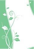 Projeto abstrato floral com fundo branco ilustração stock