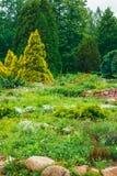 Projeto ajardinando do jardim Cama de flor, árvores verdes Fotos de Stock