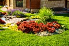 Projeto bonito da paisagem do quintal Vista de árvores coloridas e de rochas aparadas decorativas dos arbustos Foto de Stock