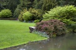 Projeto bonito do jardim foto de stock