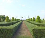 Projeto bonito do parque Imagem de Stock Royalty Free