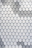 Projeto branco e cinzento da textura das penas Fotos de Stock Royalty Free