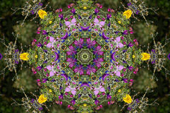 Projeto calidoscópico da flor Foto de Stock