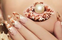 Projeto com estes shell do mar Imagem de Stock Royalty Free