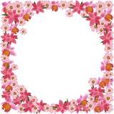 Projeto cor-de-rosa da ilustração do quadro das flores como o molde no fundo branco Fotografia de Stock