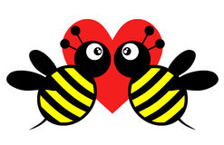 Amor da abelha Foto de Stock Royalty Free