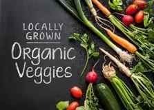 'Projeto cultivado localmente do cartaz dos vegetarianos orgânicos Vegetais novos da mola no preto Fotos de Stock