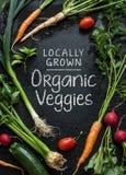 'Projeto cultivado localmente do cartaz dos vegetarianos orgânicos Vegetais novos da mola no preto Imagem de Stock Royalty Free