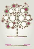Projeto da árvore de família do vetor com frames Foto de Stock