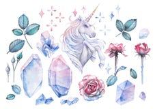 Projeto da aquarela com unicórnio e a vinheta cor-de-rosa ilustração do vetor