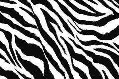 projeto da arte contemporânea da zebra Fotografia de Stock Royalty Free