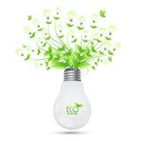 Projeto da energia de ECO com a árvore que cresce dos bulbos ilusstrati Imagens de Stock Royalty Free