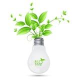 Projeto da energia de ECO com a árvore que cresce dos bulbos ilusstrati Fotografia de Stock