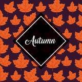 Projeto da estação do outono ilustração royalty free