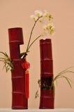 Projeto da flor Fotografia de Stock Royalty Free