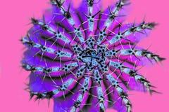 Projeto da forma do cacto Stillife mínimo Cores brilhantes na moda Humor de néon verde no fundo cor-de-rosa fotos de stock royalty free