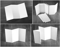 Projeto da identidade, moldes incorporados, estilo da empresa, grupo de livro Fotos de Stock Royalty Free
