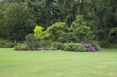 Projeto da jarda do jardim imagem de stock royalty free