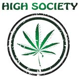 Projeto da marijuana Foto de Stock