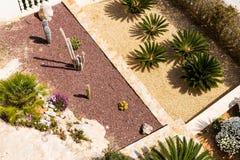 Projeto da paisagem com palmeiras e cactos Ideia superior do projeto moderno do jardim com um terraço Fotos de Stock