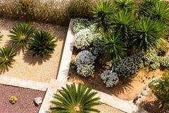 Projeto da paisagem com palmeiras e flores Ideia superior do projeto moderno do jardim com um terraço Imagens de Stock Royalty Free