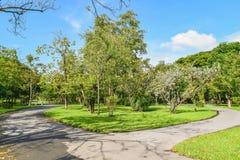 Projeto da paisagem do jardim Fotografia de Stock Royalty Free