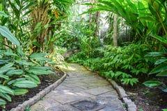 Projeto da paisagem do jardim Fotos de Stock