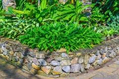 Projeto da paisagem do jardim Imagens de Stock Royalty Free