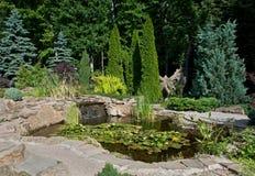 Projeto da paisagem Vista da lagoa pequena com lírios de água e da cachoeira pequena Foto de Stock