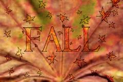 Projeto da queda com folhas de flutuação Foto de Stock Royalty Free