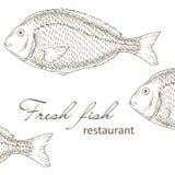 projeto da tampa do restaurante dos peixes Imagens de Stock Royalty Free