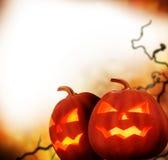 Projeto das abóboras de Halloween Fotografia de Stock Royalty Free