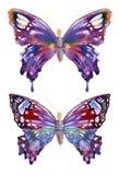 Projeto das borboletas da aquarela Fotos de Stock