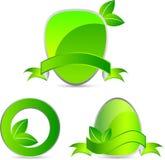 Projeto das etiquetas do verde ilustração royalty free