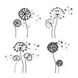 Projeto das flores Fotos de Stock