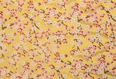 Projeto das flores de papel de fundo Fotos de Stock
