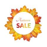 Projeto das vendas do outono do cartaz Fotos de Stock Royalty Free