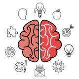projeto de ataque do cérebro Imagem de Stock