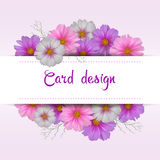 Projeto de cartão da flor do cosmos Convite floral Fotos de Stock