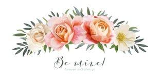 Projeto de cartão floral do vetor: pêssego do rosa de jardim, Rosa alaranjada cremosa Imagem de Stock