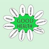 Projeto de conceito da boa saúde Fotografia de Stock Royalty Free