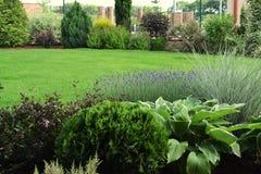 Projeto de perennials de florescência, de gramas decorativas e de arbustos com um gramado verde fotografia de stock