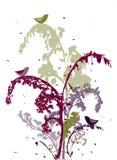 Projeto de plantas seco Fotografia de Stock Royalty Free
