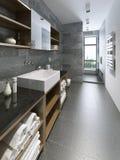 projeto do banheiro da Alto-tecnologia Imagens de Stock
