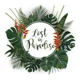 Projeto do cartaz da temporada de verão Perdido na escrita do paraíso em um tropi Fotos de Stock