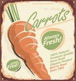 Projeto do cartaz do vintage com cenoura suculenta Imagem de Stock