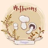 Projeto do cogumelo Foto de Stock Royalty Free